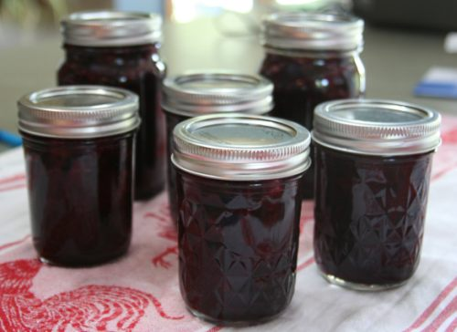 Blueberry and Rhubarb Jam Recipe