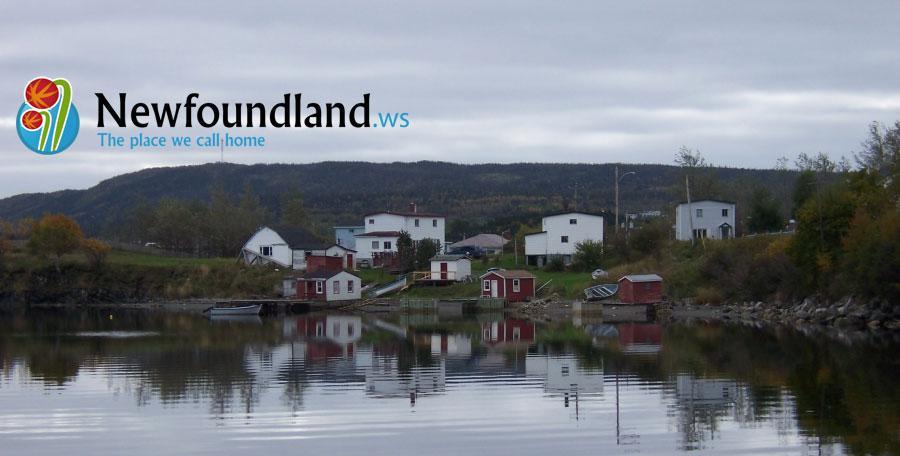 Newfoundland.ws